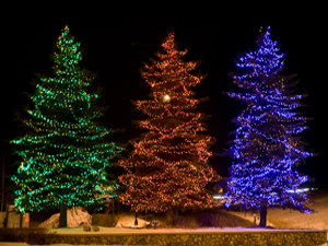 true or false when hanging lights on an outdoor evergreen the industry rule of thumb is 100 lights per every vertical foot of tree