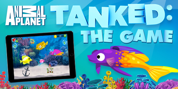 Tanked: Can You Name These Fish?
